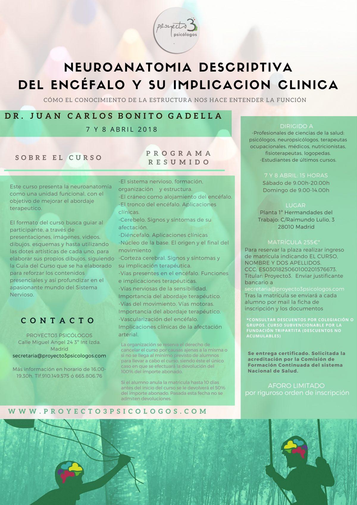 POSTER-NEUROANATOMIA-DESCRIPTIVADEL-ENCÉFALO-y-su-implicacion-clinica-1200x1697.jpg