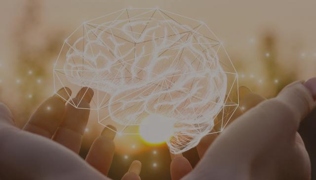 https://www.proyecto3psicologos.com/wp-content/uploads/2021/07/Web-cerebro-640x366.png