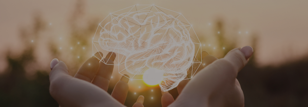 Web-cerebro.png